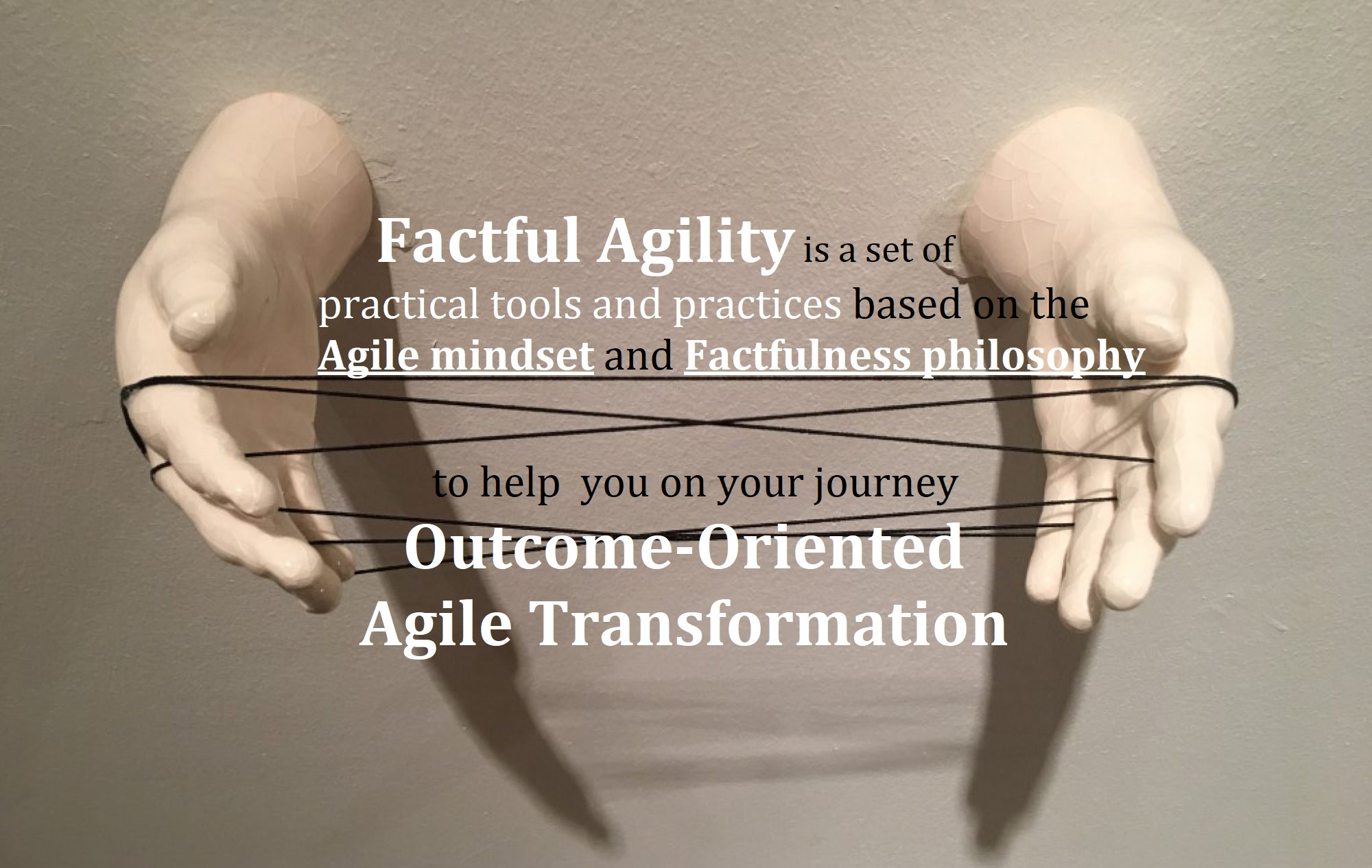 Factful Agility